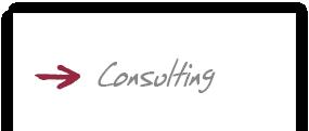 jost-ag_startseite_consulting_1